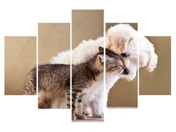 Obraz kočky se psem (K011215K150105)