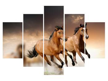 Obraz koní (K011251K150105)