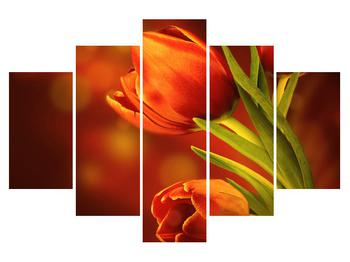 Moderný obraz na plátne K011256K150105 (K011256K150105)