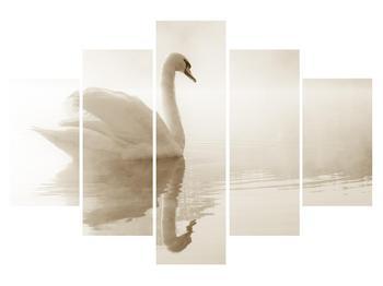 Obraz labutě (K011280K150105)