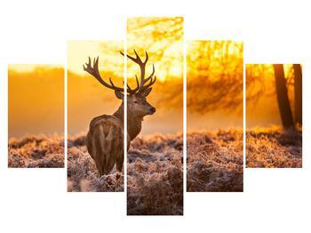 Obraz jelena (K011281K150105)