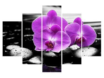 Obraz květů orchideje (K011379K150105)