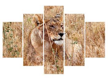 Moderní obraz K011559K150105 (K011559K150105)