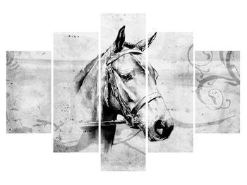 Obraz - portrét koně (K011919K150105)