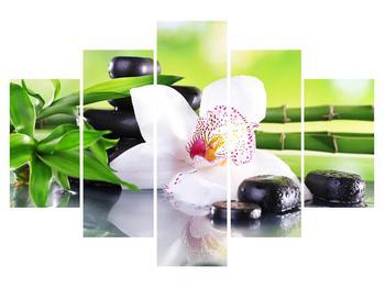 Orchidea képe (K011995K150105)