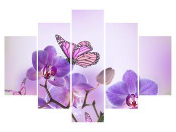 Obraz motýla na květech orchideje (K012044K150105)