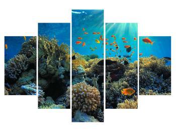Obraz podmorského sveta (K012161K150105)