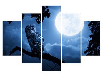 Obraz noční sovy (K012180K150105)