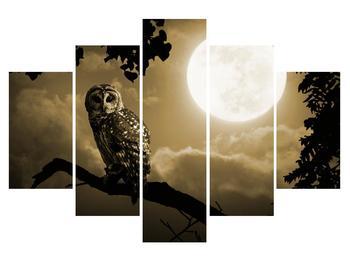 Obraz noční sovy (K012182K150105)