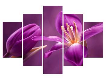 Moderný obraz na plátne K012218K150105 (K012218K150105)