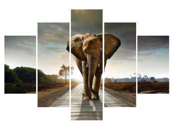 Obraz slona (K012479K150105)