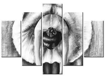Černobílý obraz baletky (K013680K150105)