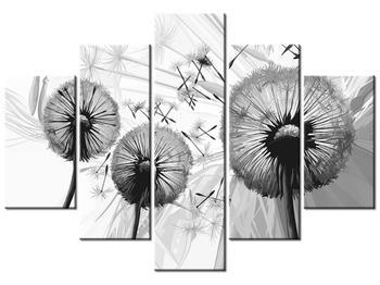 Tablou albnegru cu mulțime de păpădii (K014116K150105)
