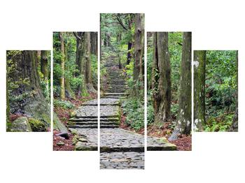 Obraz kamenných schodov v lese (K014268K150105)