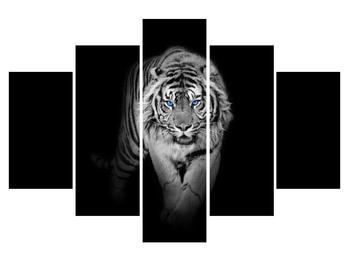 Obraz tygra (K014968K150105)