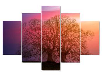 Obraz stromov v hmle (V020088V150105)