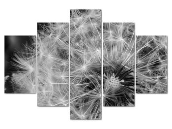Obraz -  páperie púpav (V020117V150105)