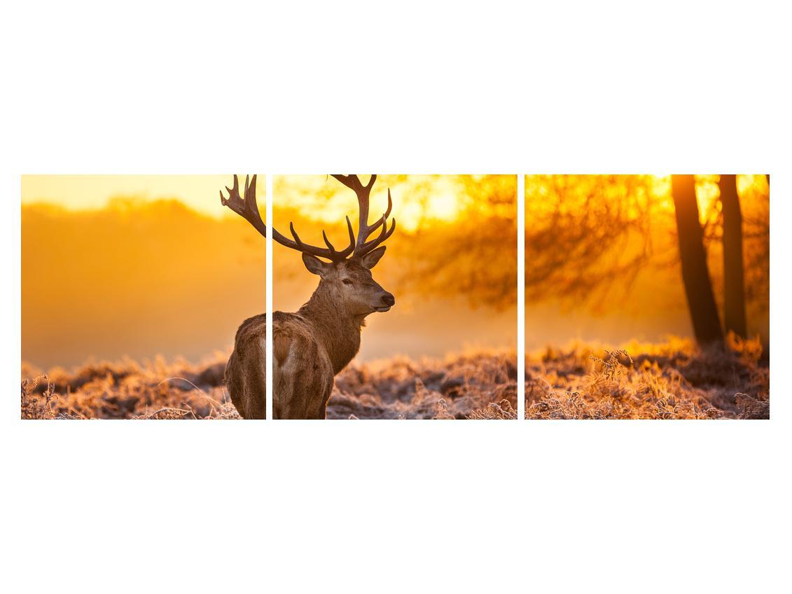 Slika jelena (K011281K15050)