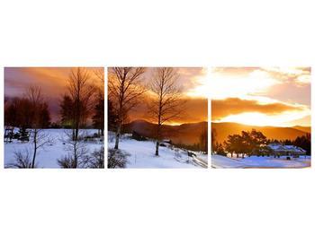 Obraz zimní krajiny (F000031F15050)