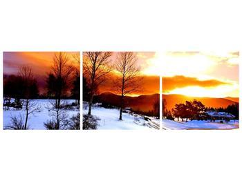 Obraz zimní krajiny (F000192F15050)
