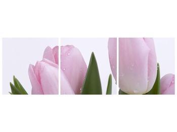 Obraz růžových tulipánů (F000389F15050)