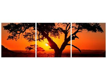 Obraz ohnivého západu slunce (F001288F15050)