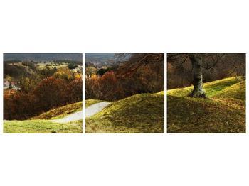 Obraz podzimního pahorku (F001650F15050)