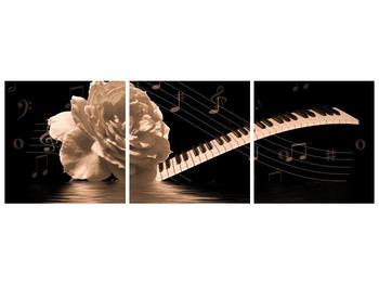 Černobílý obraz růže a klavíru (F001875F15050)