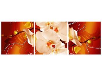 Obraz bílých orchidejí (F005694F15050)