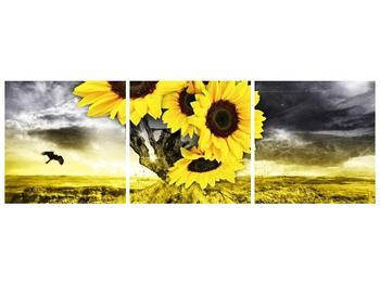 Moderní obraz F005873F15050 (F005873F15050)