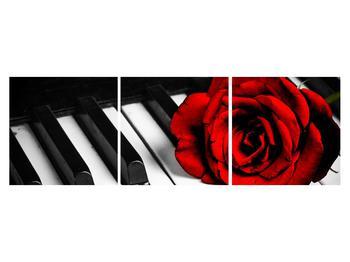 Zongora és egy rózsa képe (K011229K15050)