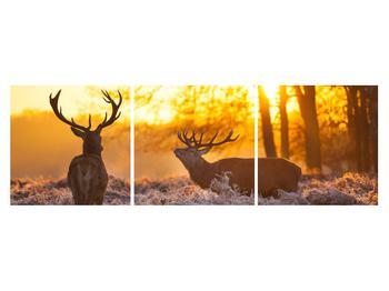 Obraz jelenů (K011267K15050)