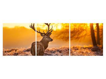 Obraz jeleňa (K011281K15050)