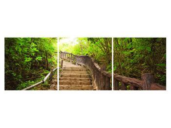 Tablou cu trepte ducând prin peisaj (K011329K15050)