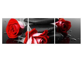 Obraz růže (K011400K15050)