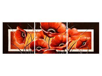 Obraz vlčích máků (K011508K15050)