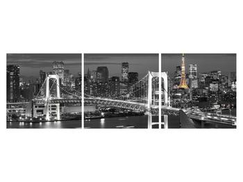 Obraz mostu (K011529K15050)