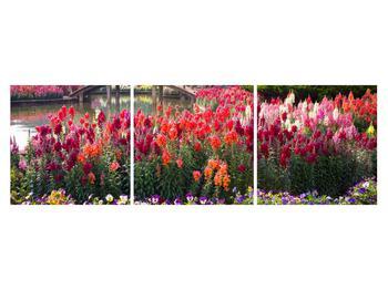 Obraz kvetín (K012048K15050)