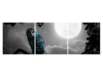 Tablou cu bufnița nocturnă (K012185K15050)