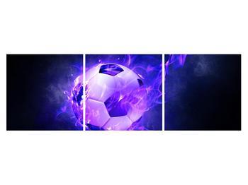 Tablou cu mingea de footbal în plasă (K014164K15050)