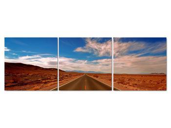 Obraz dlhej cesty (V020076V15050)