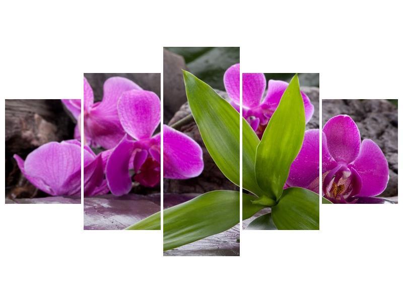 Obraz fialových orchidejí s listím (F004027F150805PCS)