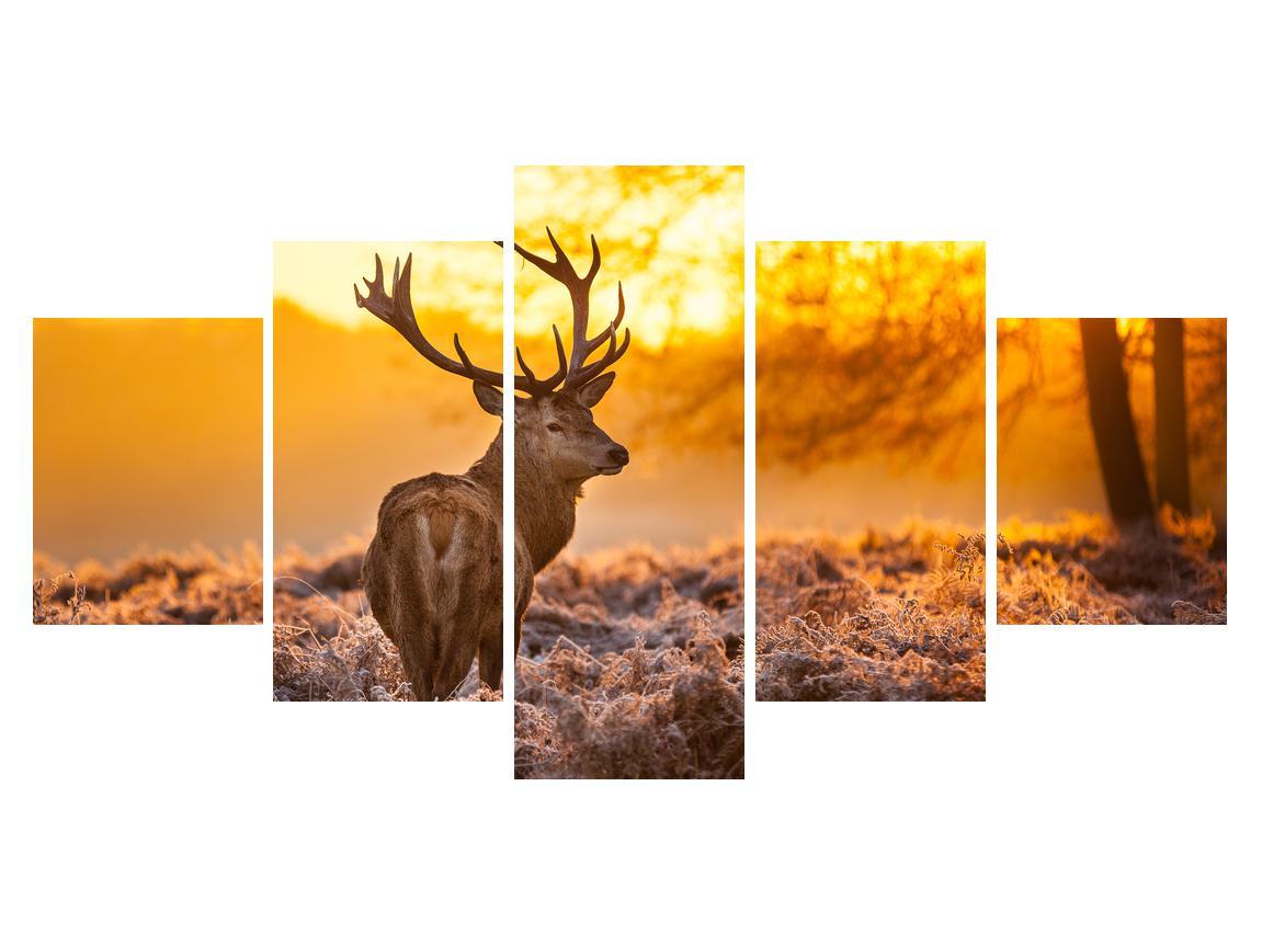 Slika jelena (K011281K150805PCS)