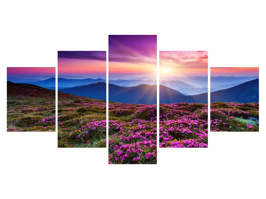Slika planinskog rascvijetalog krajolika (K011322K150805PCS)
