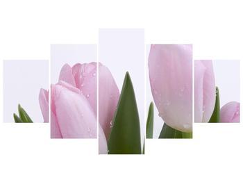 Obraz růžových tulipánů (F000389F150805PCS)