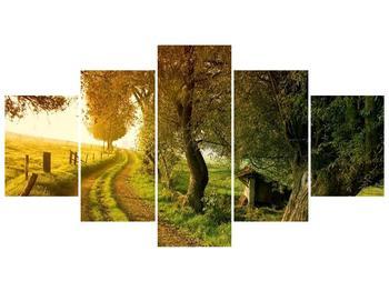 Krásný obraz krajiny (F000972F150805PCS)