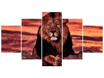 Obraz krále zvířat (F001507F150805PCS)