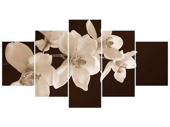Krásný obraz bílých květin (F001888F150805PCS)