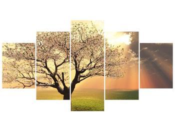 Obraz kvetoucího stromu (F002280F150805PCS)