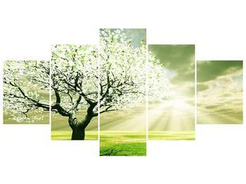 Obraz stromu na jaře (F002291F150805PCS)